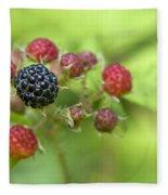 Wild Berries Fleece Blanket