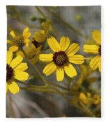 Wild Brittle Bush Flowers Fleece Blanket