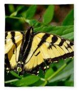 Wild Butterfly Fleece Blanket
