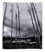 Wild Fire Aftermath In Black And White Fleece Blanket