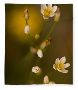 Wild Garlic Fleece Blanket