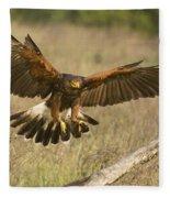 Wild Harris Hawk Landing Fleece Blanket