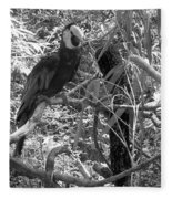 Wild Hawaiian Parrot Black And White Fleece Blanket