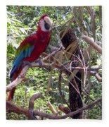 Wild Hawaiian Parrot  Fleece Blanket