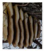 Wild Honey Bee Nest Fleece Blanket