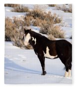 Wild Horse Stallion Fleece Blanket