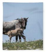 Wild Horses-animals-image-19 Fleece Blanket