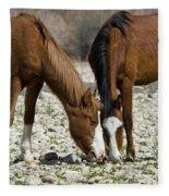 Wild Horses Grazing  Fleece Blanket