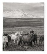 Wild Icelandic Horses Fleece Blanket
