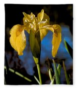 Wild Iris Fleece Blanket
