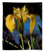 Wild Iris Fleece Blanket