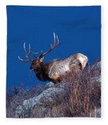 Wild Moon Fleece Blanket