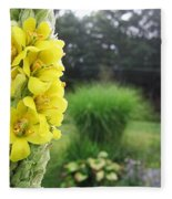 Wild Mullein Fleece Blanket