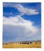 Wild Mustang Herd Grazing Fleece Blanket