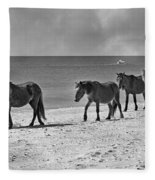 Wild Mustangs Of Shackleford Fleece Blanket