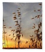 Wild Oats 2am-110425 Fleece Blanket