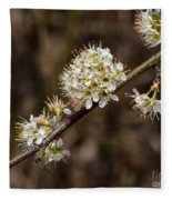 Wild Pear Fleece Blanket