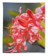 Wild Pink Azalea At Moore State Park Fleece Blanket
