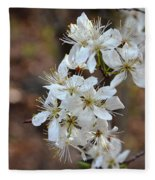 Wild Plum Blooms Fleece Blanket