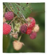 Wild Raspberrys Fleece Blanket