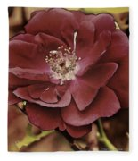 Wild Rose Iv Fleece Blanket