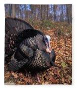 Wild Turkey Displaying Fleece Blanket