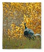 Wild Turkeys And Fall Colors Fleece Blanket