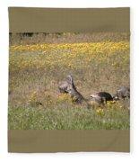 Wild Turkeys Grazing Fleece Blanket