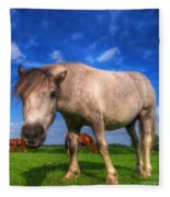 Wild Young Horse On The Field Fleece Blanket