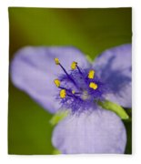 Wildflower 1 - Botanical Photography By Sharon Cummings Fleece Blanket