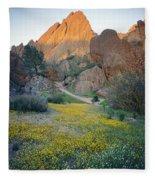 1b6430 Wildflowers In Pinnacles National Park Fleece Blanket