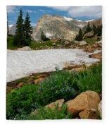 Wildflowers In The Indian Peaks Wilderness Fleece Blanket