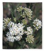 Wildflowers - White Yarrow Fleece Blanket