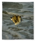Willet Washing 1 Fleece Blanket