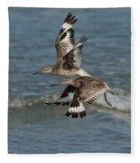 Willets In Flight Showing Molt Fleece Blanket
