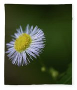 Willow Aster Fleece Blanket