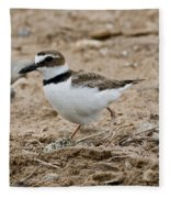 Wilsons Plover At Nest Fleece Blanket