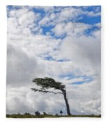 Wind-bent Flag Tree In Tierra Del Fuego Fleece Blanket