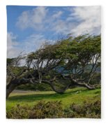 Wind-bent Tree In Tierra Del Fuego Patagonia  Fleece Blanket