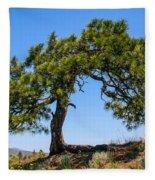 Lonesome Pine Tree Fleece Blanket