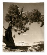 Wind Swept Tree Fleece Blanket