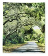 Winding Path Fleece Blanket