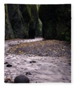 Winding Through Oneonta  Gorge Fleece Blanket