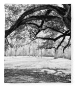 Window Oak - Bw Fleece Blanket