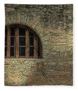 Window On The Alamo Fleece Blanket