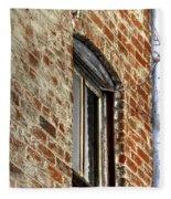 Window Pole 13153 Fleece Blanket