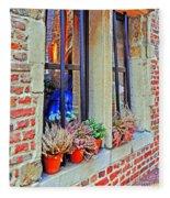 Window To Antwerp Fleece Blanket
