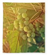 Wine Grapes Fleece Blanket
