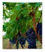 Wine Grapes On The Vine Fleece Blanket