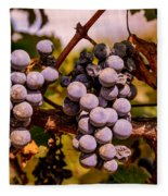 Wine Grapes On The Vine Fleece Blanket